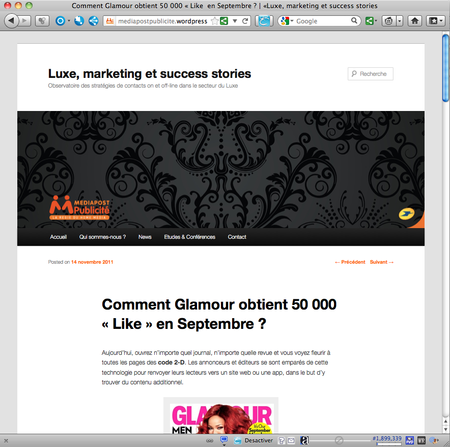 Mediapost_publicite_blog_luxe